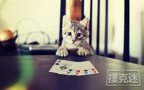 【蜗牛棋牌】不要用结果判断一手牌打的对不对