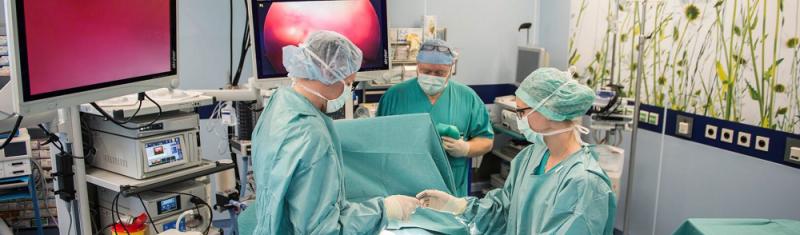 【蜗牛棋牌】罗马尼亚新冠肺炎单日新增10142例 累计确诊334236例